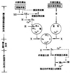 电路 电路图 电子 设计 素材 原理图 285_300