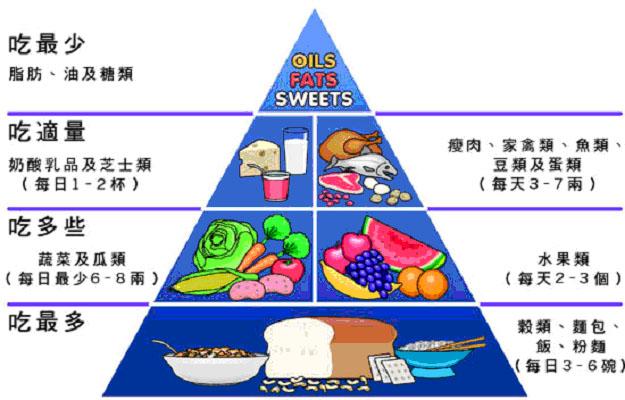 食物金字塔